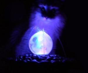 Spiritualitaet, Magie