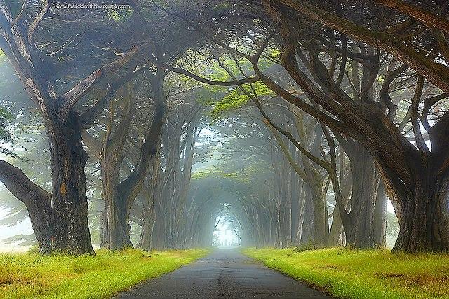 Mystischer Weg
