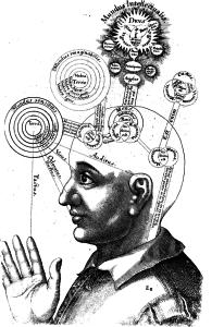 Die 7 Bewusstseins-Ebenen