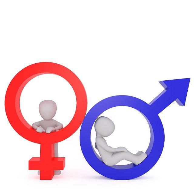 Geschlecht